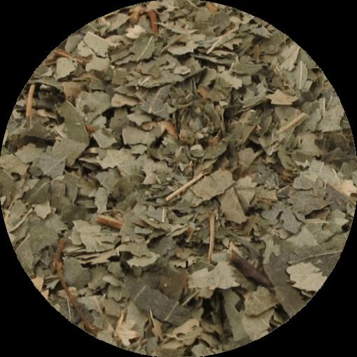 Van de berk gebruiken we de bladeren voor de kruidenthee.