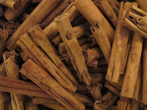 Kaneelschors Ceylon Heel