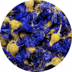 Blauwe korenbloem kent een veelvoud aan toepassingen die u kunnen helpen bij uw gezondheid. kan helpen bij koorts, lever en gal, menstruatie.