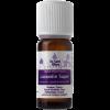Lavendin olie biologisch herstelt de harmonie en creëert een prettige, frisse en zuiverende sfeer. Lavendel ontspant de zenuwen, verdrijft slechte gedachten en is vooral bekend om haar gunstige uitwerking bij het inslapenLavendin olie biologisch herstelt de harmonie en creëert een prettige, frisse en zuiverende sfeer. Lavendel ontspant de zenuwen, verdrijft slechte gedachten en is vooral bekend om haar gunstige uitwerking bij het inslapen