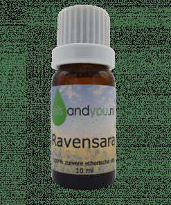 Ravensara olie, - aroma: fris, zoetig, fruitig, eucalyptus-achtig - kleur: helder tot lichtgeel - consistentie: dun Verpakt per 10ml